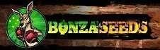 בונזה סידס - Bonza Seeds
